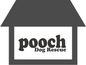 Pooch Dog Rescue Charity Shop