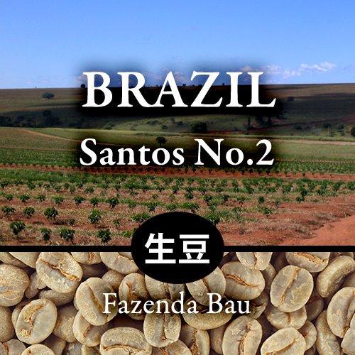 【生豆】  〈ブラジル〉サントス No.2