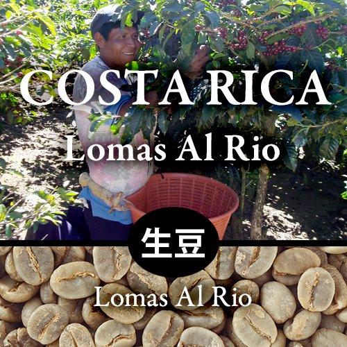 【生豆】  〈コスタリカ〉ロマス・アル・リオ