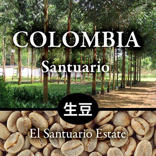【生豆】  〈コロンビア〉サントゥアリオ