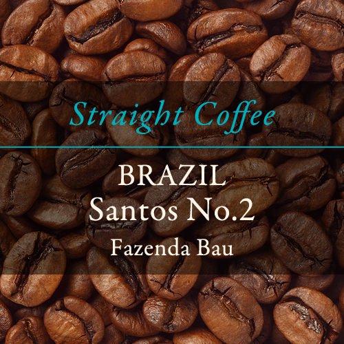 【ストレートコーヒー】  〈ブラジル〉サントス No.2