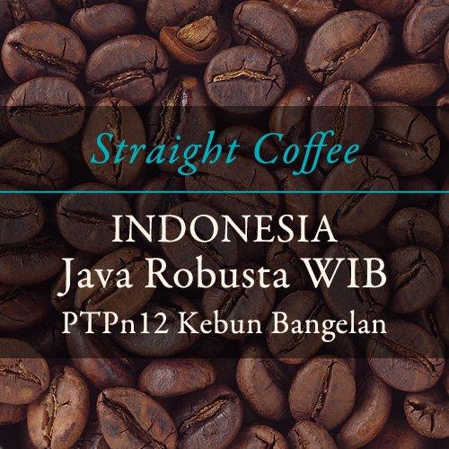 【ストレートコーヒー】  〈インドネシア〉ジャバ ロブスタWIB