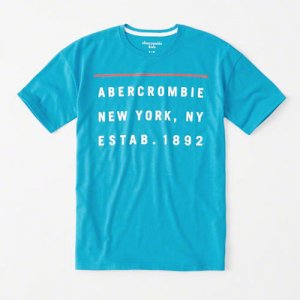 abercrombie kids/キッズ本物正規品!ボーイズ【Tシャツ】-logo graphic tee-