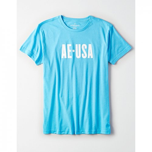 American Eagle Outfitters/アメリカンイーグル本物正規品!メンズ/Tシャツ-AE Graphic T-shirt-