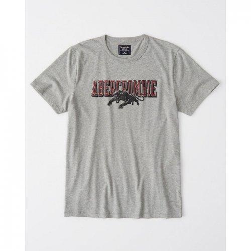 アバクロ本物正規品!メンズ【Tシャツ】-Varsity Graphic Logo Tee-
