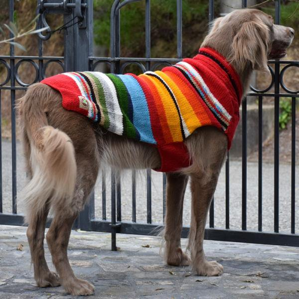 <img class='new_mark_img1' src='//img.shop-pro.jp/img/new/icons57.gif' style='border:none;display:inline;margin:0px;padding:0px;width:auto;' />【Chilly Dog Sweaters】ウール100% ドッグセーター Red Sundance Dog Sweater