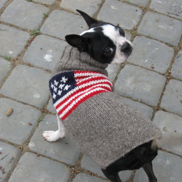【Chilly Dog Sweaters】ウール100% ドッグセーター American Flag Dog Sweater