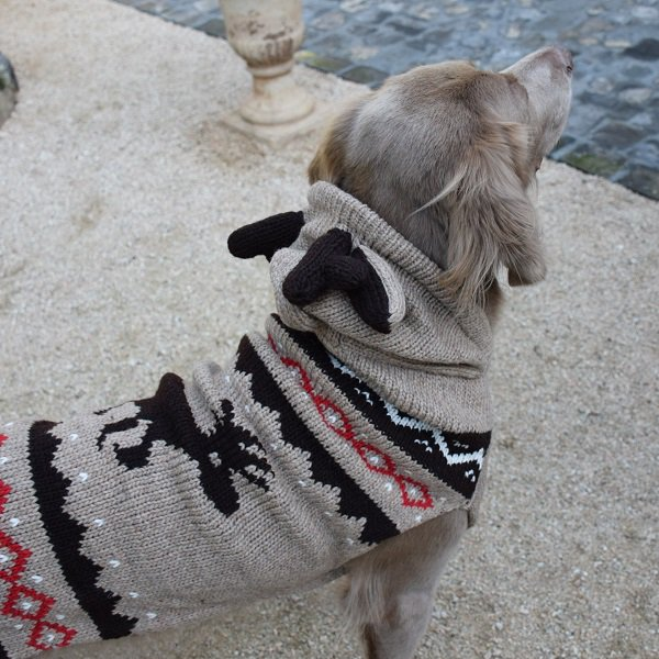 【Chilly Dog Sweaters】ウール100% ドッグセーター Moosey Hoodie Dog Sweater