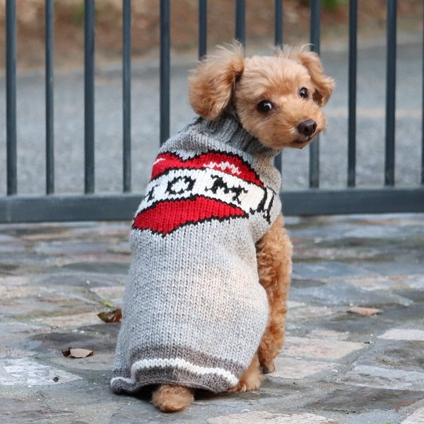 <img class='new_mark_img1' src='//img.shop-pro.jp/img/new/icons57.gif' style='border:none;display:inline;margin:0px;padding:0px;width:auto;' />【Chilly Dog Sweaters】ウール100% ドッグセーター   Tattooed Mom Dog Sweater