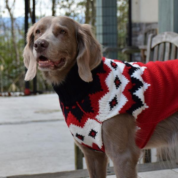 【Chilly Dog Sweaters】ウール100% ドッグセーター Red Fairisle Dog Sweater