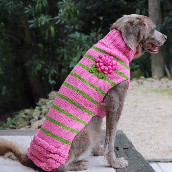 【Chilly Dog Sweaters】ウール100% ドッグセーター Pink Flowered Dog Skirt Sweater
