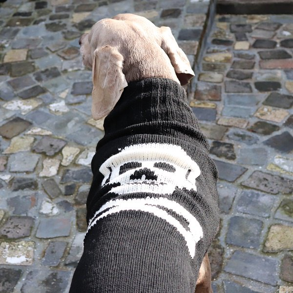 【Chilly Dog Sweaters】ウール100% ドッグセーター Black Skull Dog Sweater