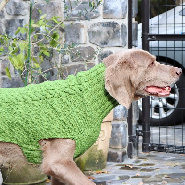 【Chilly Dog Sweaters】ウール100% ドッグセーター Cable Knit Green Dog Sweater