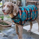 <img class='new_mark_img1' src='//img.shop-pro.jp/img/new/icons57.gif' style='border:none;display:inline;margin:0px;padding:0px;width:auto;' />【Chilly Dog Sweaters】ドッグコート Turquoise Southwest Blanket (XL〜XXL)