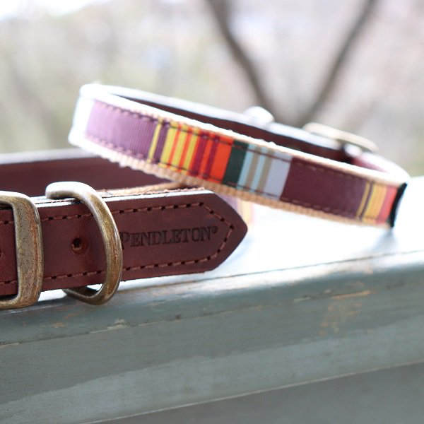 【PENDLETON】GREAT SMOKEY MOUNTAIN NATIONAL PARK EXPLORER COLLAR (ペンドルトン・ドッグカラー)