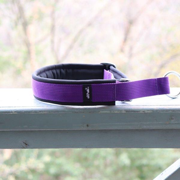 【eRPaki】 ドイツ製ハーフチョークカラー 4.0cm幅 (テープ幅30mm) Purple×Black ★レターパックOK★
