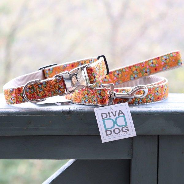 《チャリティー商品》【DIVA DOG】 バックルカラー2.5cm幅 (Woodstock Spirit)★レターパックOK★
