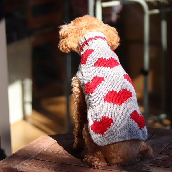 【Chilly Dog Sweaters】ウール100% ドッグセーター Red Hearts Dog Sweater