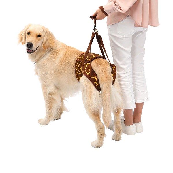 【LaLaWalk】Hip 大型犬用 KIRIN(メーカー直送商品)