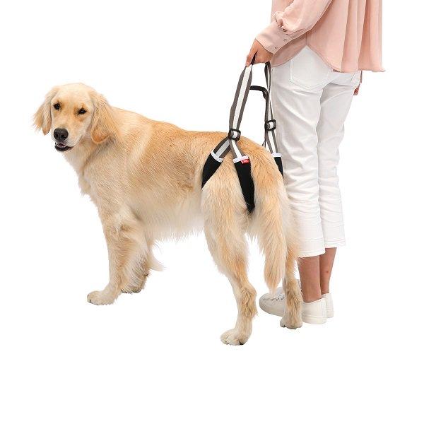 【LaLaWalk】歩行補助ハーネスLaLaWalkSTEP MONO 中型犬/大型犬用 (メーカー直送商品)