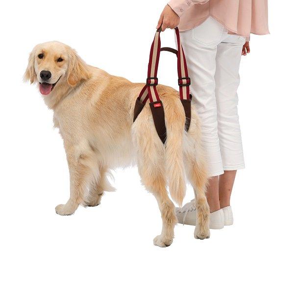 【LaLaWalk】歩行補助ハーネスLaLaWalkSTEP ワインブラウン 中型犬/大型犬用 (メーカー直送商品)