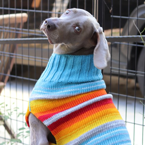 【Chilly Dog Sweaters】ウール100% ドッグセーター Turq Serape Dog Sweater