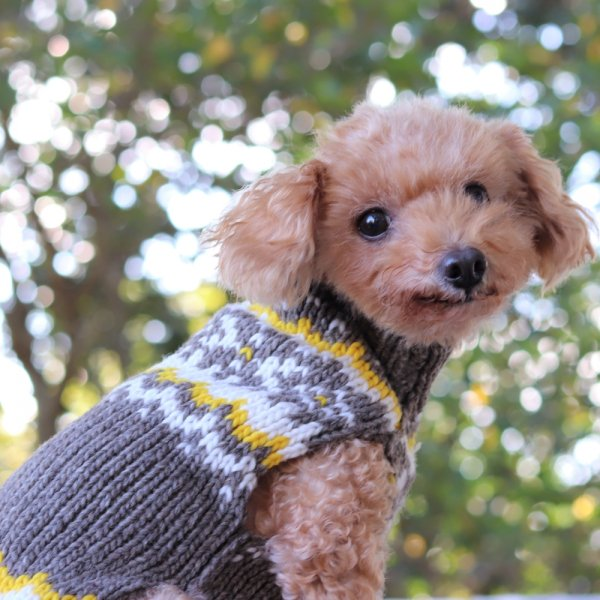 【Chilly Dog Sweaters】ウール100% ドッグセーター Gray Nordic Dog Sweater