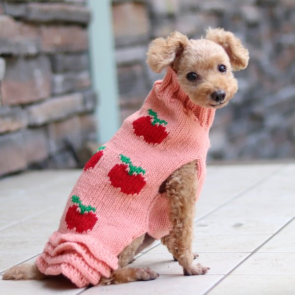 【Chilly Dog Sweaters】ウール100% ドッグセーター Apple Skirt Dog Sweater