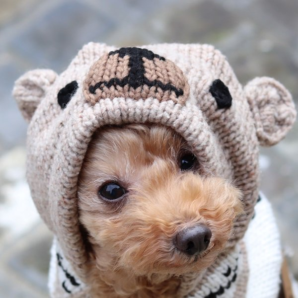 【Chilly Dog Sweaters】ウール100% ドッグセーター Brown Bear Hoodie Dog Sweater