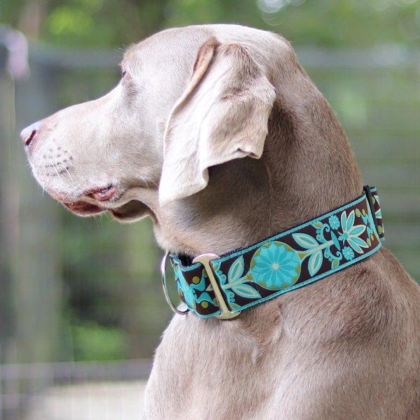 【DIVA DOG】 マーチンゲールカラー5cm幅 (Boho Peacock) ★レターパックOK★