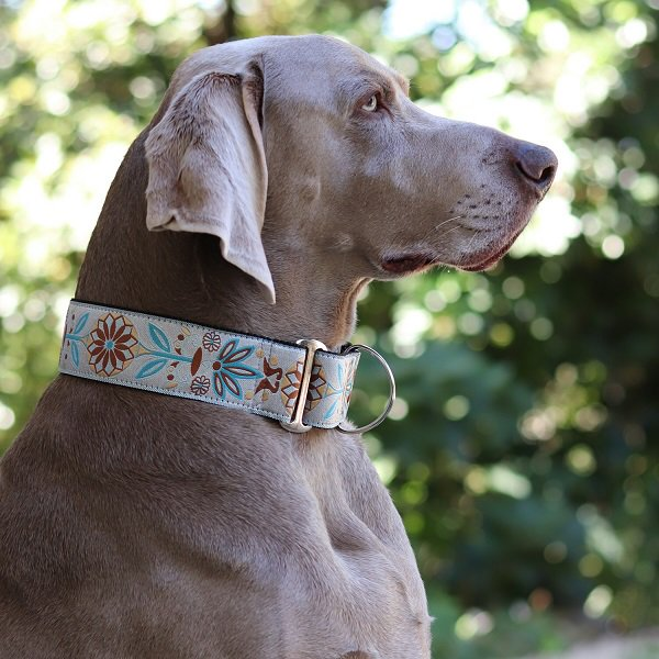 【DIVA DOG】 マーチンゲールカラー5cm幅 (Boho Morocco) ★レターパックOK★