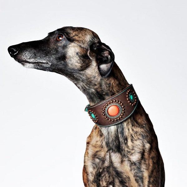 【Dog With a Mission】DWAM 本革製ドッグカラー (Sammy Greyhound) ★レターパックOK★