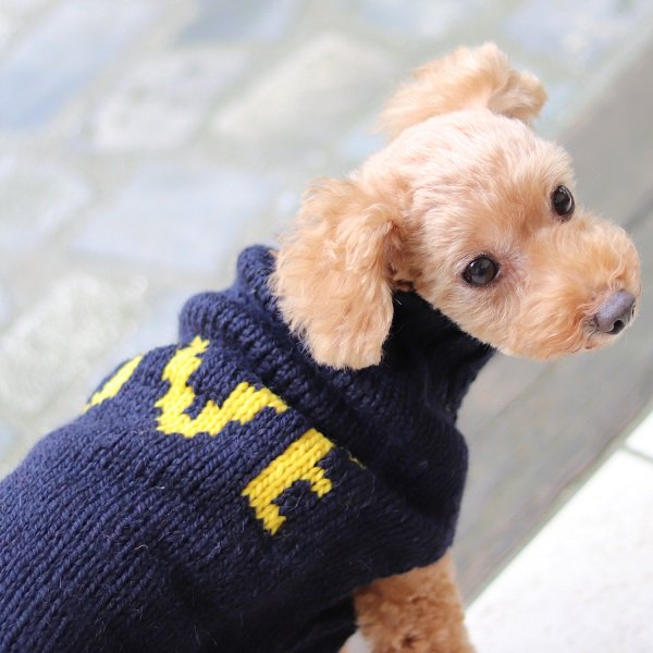 【Chilly Dog Sweaters】アルパカ100% ドッグセーター Alpaca Love Dog Sweater
