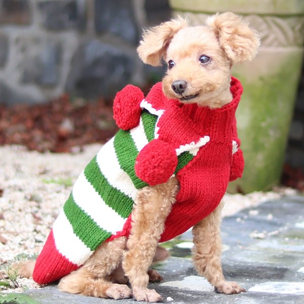 【Chilly Dog Sweaters】ウール100% ドッグセーター Christmas Elf Holiday Dog Sweater