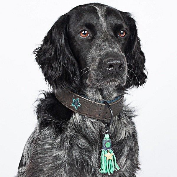 【Dog With a Mission】DWAM 本革製ドッグカラー (Boy) ★レターパックOK★