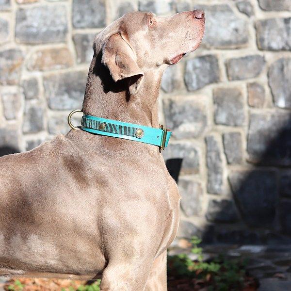 【LOWLANDS COUTURE DOGS】本革製ドッグカラー WILD ROMANCE #4 ★レターパックOK★