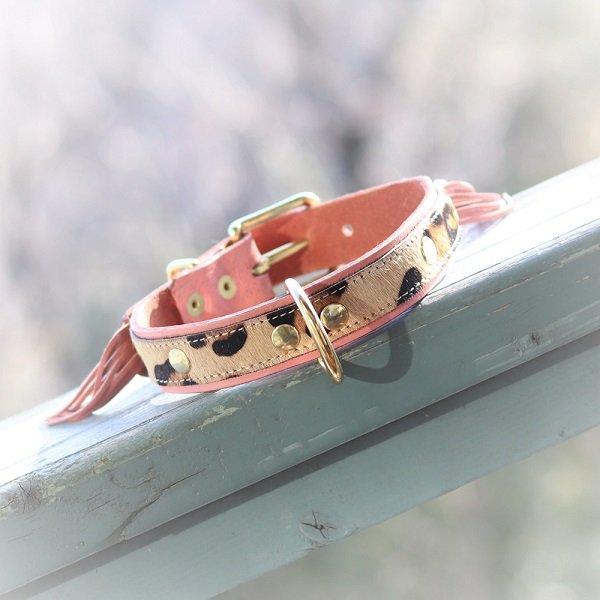 【LOWLANDS COUTURE DOGS】本革製ドッグカラー WILD ROMANCE #12 ★レターパックOK★