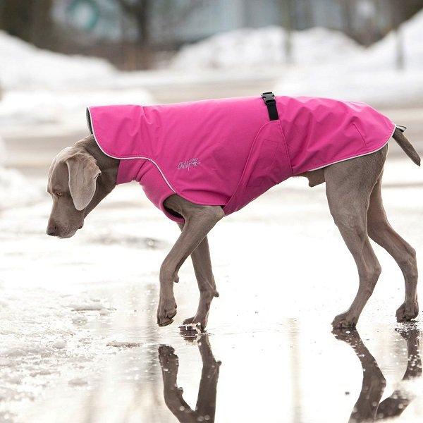 ★新発売★【Chilly Dogs】Harbour Slicker (ハーバースリッカー/レインコート)