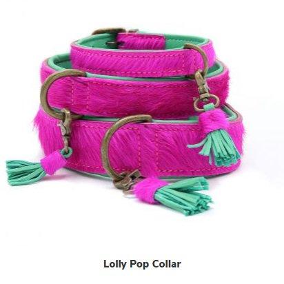 【Dog With a Mission】DWAM 本革製ドッグカラー&ブレスレット (LOLLY POP) ★レターパックOK★