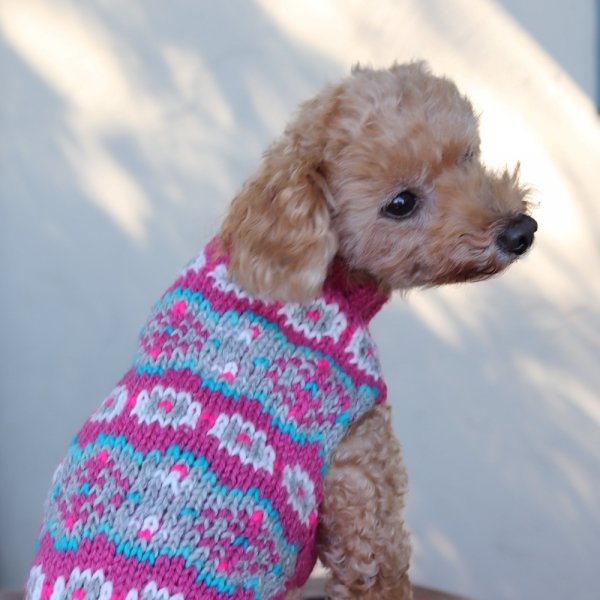 【Chilly Dog Sweaters】アルパカ100% ドッグセーター Alpaca Rose Fairisle Dog Sweater