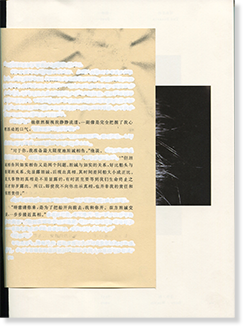 BEES & BEARABLE Chen Zhe 蜜蜂 & 可承受的 陳哲 写真集 署名本 signed