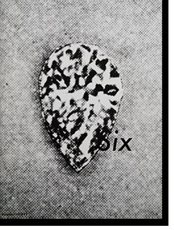 Comme des Garcons SIX (Sixth Sense) Number 1 1988 コムデギャルソン シックス 第1号