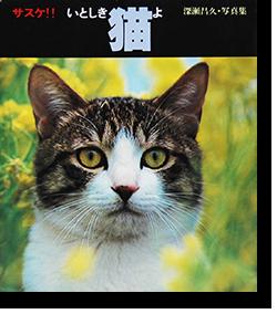 サスケ!!いとしき猫よ 深瀬昌久 写真集 Sasuke, Itoshiki Neko yo(Sasuke, My Dear Cat) FUKASE MASAHISA