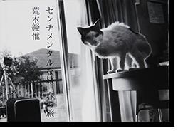 センチメンタルな旅 春の旅 荒木経惟 写真集 Sentimental Journey, Spring Journey ARAKI NOBUYOSHI
