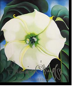 ジョージア・オキーフの画像 p1_32
