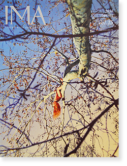 IMA Vol.15 2016 Spring 第15号 ライアン・マッギンレー責任編集号 Ryan McGinley UP TO DATE