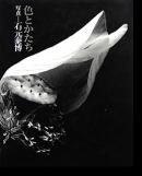 色とかたち 石元泰博 写真集 ニコンサロンブックス 30 Color and Form YASUHIRO ISHIMOTO