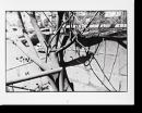 ライカで散歩 「生まれる」 北井一夫 オリジナルプリント Walking with Leica
