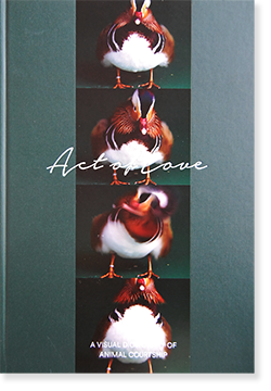 ACT OF LOVE: A VISUAL DICTIONARY OF ANIMAL COURTSHIP