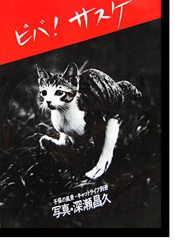 ビバ!!サスケ 子猫の風景・キャットライフ別冊 深瀬昌久 VIVA! SASUKE Masahisa Fukase